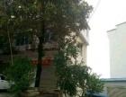 两庙社区东两百米 仓库 600平米