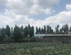 陆良华侨农场旁 土地 47亩土地、鱼塘、养殖场、出租