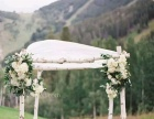 定制植物墙制作,花墙制作,婚礼现场布置,室内软装设计