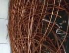栖霞二手电缆线回收-燕子矶周边废旧电线电缆高价回收