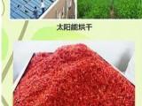 煜林枫辣椒太阳能烘干系统