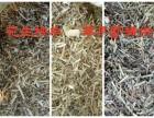 花生秧羊草提供草面