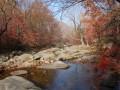 大地森林公园 有什么好的住宿吗