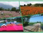 深圳周边特色农家乐一日游 野炊拓展休闲尽在乐湖生态园