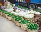 广州农产品配送 蔬菜配送公司 工厂食堂承包 粮油配送