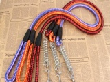 供应大狗用宠物带 编织圆带牵引绳 优质带弹簧宠物绳链2.0*12