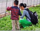 夏季旅游推荐 上海浦东农家乐一日游