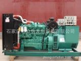 50kw玉柴柴油发电机组-河北厂家直销