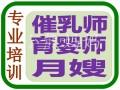 南海桂城 平洲 禅城哪里有催乳师培训 月嫂育婴师培训