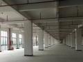 标准厂房二楼2500平方米火爆出租