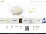 网页设计制作 网络推广营销 X网络事业,就找简界