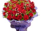雅梦鲜花坊(阳泉新地标)你用花的最佳选择 物美价廉