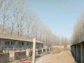 三堡镇四堡村 土地 2400平米
