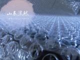 山东专业生产气泡膜厂家 质优价廉 厂家直销