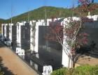 昆明北边的长松园义冢坐北朝南帝王向风水好家属坟场