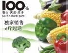 大连有机蔬菜配送-大连匠农农业科技发展有限公司
