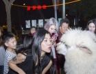 湖州2017开业庆典澳洲神兽租借,上海启欣展览展示