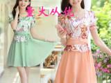 2014新款韩版女装夏装大码修身印花蕾丝打底短袖雪纺连衣裙884