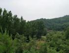 南阳内乡县 25000亩 用材林地 转让