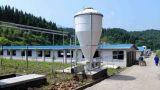 猪场自动供料设备/猪场自动料线/猪场自动喂料