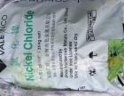 大量回收氯化锌感谢支持