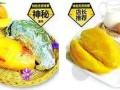 九江小吃加盟泉城烤薯费用/条件/优势