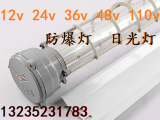 110v防爆灯  36V探照灯 LED管