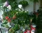 百草园鲜花预订,植物盆景,婚车装饰,礼仪花篮,会场布置