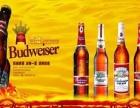 英博啤酒 英博啤酒加盟招商