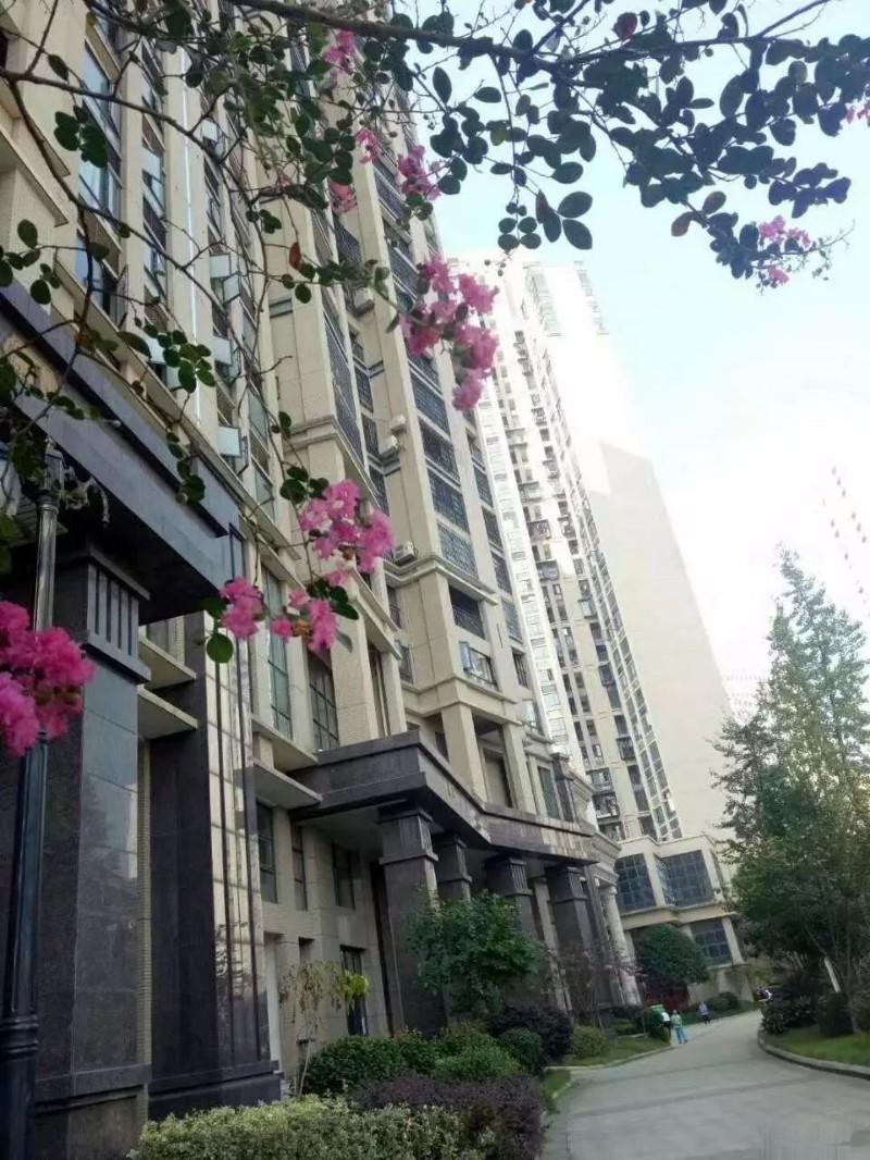 湘潭买房选哪里 骏景豪廷国企项目 十字路口位置价格优惠!!