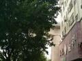 超旺人气商铺、一楼商铺招租、二到六楼公寓出租