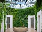 绿色装修加盟,植物墙加盟,绿植生态墙加盟
