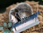 厂家供应鼹鼠夹 批发地爬子捕捉器 地爬子捕捉神器