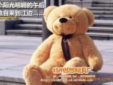 供应 毛绒玩具熊 泰迪熊 开心熊公仔 1.2米玩具熊 微笑熊批发