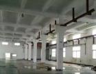 石碣四甲一楼厂房1000平米出租,带装修