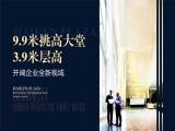 海秀中路 海垦广场写字楼 交通便利 3.9米层高 配套齐全
