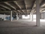 南京西善桥仓库低价急租可分割 可托管