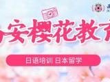西安樱花教育专业的日语培训学习机构
