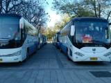 北京海淀租車22座-55座金龍大客車旅游包車