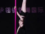 资阳钢管舞学校 资阳钢管舞专业培训 ME舞蹈培训