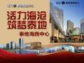海沧区泰地海西中心商业街火热招商中