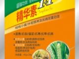 稻麦精华素 专治水稻二化螟三化螟 营养杀菌 叶面肥