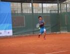 淄博阿伦少儿网球培训