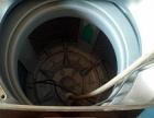 个人一手6.5公斤全自动洗衣机