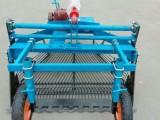 土豆收获机型号新款土豆收获机 花生收获机规格 厂家销售收获机