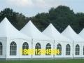 宿州展览帐篷,婚庆篷房,尖顶篷房等 厂家定制出租