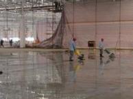 普陀区宜川路保洁公司。保洁托管。地毯地面清洗打蜡。