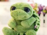 新奇玩偶 爱情公寓3 曾小贤卖萌大眼睛乌龟 小海龟毛绒玩具公仔