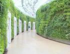 北京植物墙定做立体墙植物墙价格