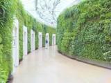 北京假墻仿真植物墻廠家
